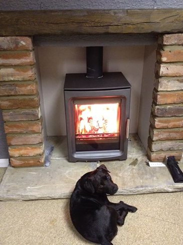 An adorable dog taking a rest infront of one of our fireplaces